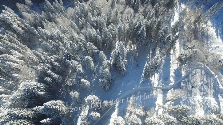 Winter am Spitzing 3